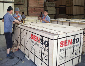 structural plywood,structural plywood price,structural plywood grades,3/4 structural plywood,structural plywood home depot,CDX plywood,marine plywood,structural plywood 12mm,structural 2 plywood,structural plywood factory